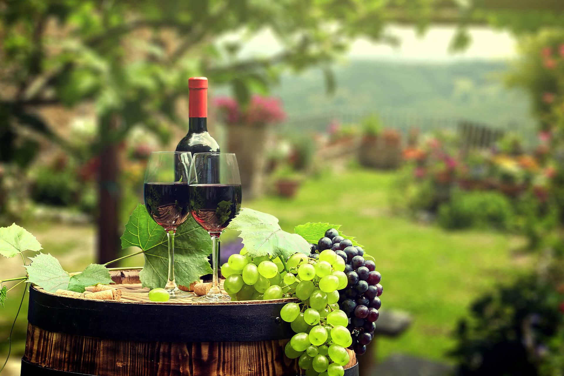 Ocenjevanje Vin Vinorodne Dežele Podravja